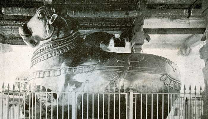 Nandhi of Brihadeeswarar Temple